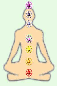 Chakras, or energy centers, of the body. Each chakra aligns with a particular color and vibration, from the highest vibrations (or the colors of white and purple at the crown and third eye), to the lowest vibrations (or the color of red at the root chakra).